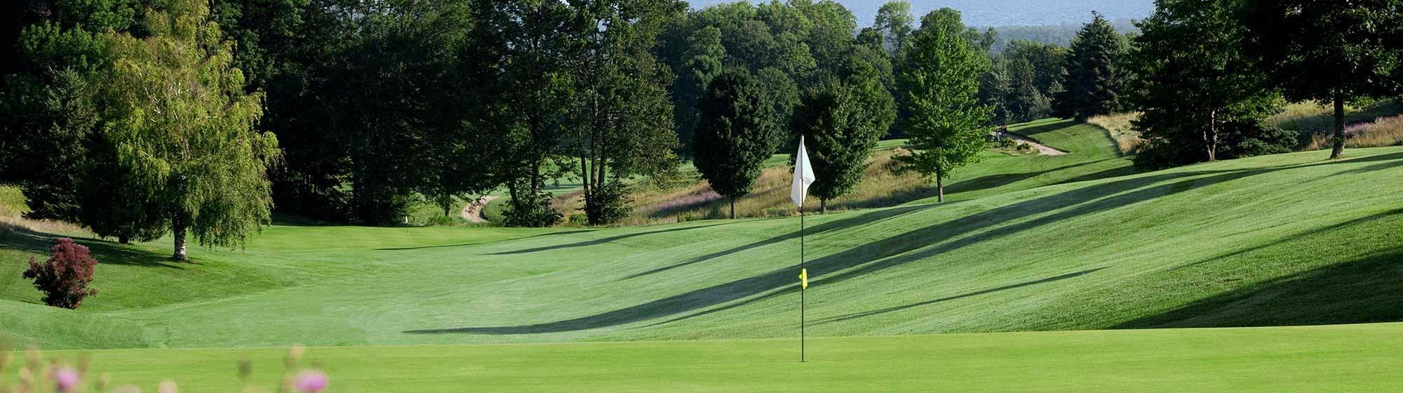 Elmbrook Golf views
